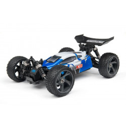 Buggy ION XB 1/18 2.4GHZ RTR (MV12801)