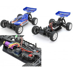 Bullet Electric Brushless Buggy (A2011T)