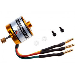 Brushless motor(WK-WS-21-002)
