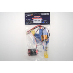 CopterX - 430XL Brushless Motor and 50A Brushless ESC (CX450-10-06)