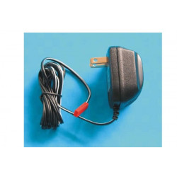 Charger 110V USA (two feet, flat) (old EK1-0052)
