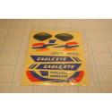 Eagle Eye Sticker