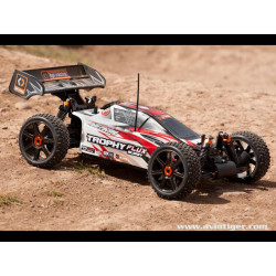 BUGGY TROPHY FLUX RTR