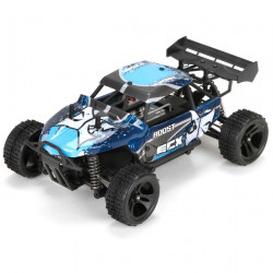 Roost 1:24 4WD Desert Buggy: Blue/Grey RTR (ECX00015T1)