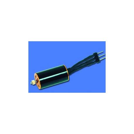Brushless motor(WK-WS-12-003)