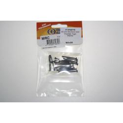 VIS CHC M2x25mm (X20) (PV0779)