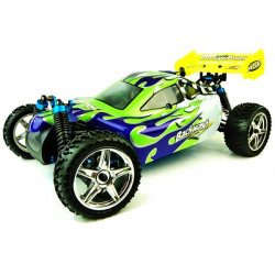 Backwash Nitro Buggy 1/10th 2.4Ghz - Green (94166)