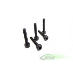 DIN 12.9 Socket Head Cap M2,5x6 (5pcs)